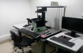 zdjęcie Fluorescence inverted microscope with digital image analysis