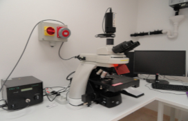 zdjęcie Fluorescence upright microscope with digital image analysis