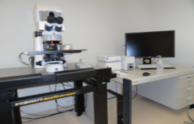 photo of the Confocal (laser scanning) microscope