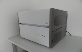 photo of the Real-time PCR