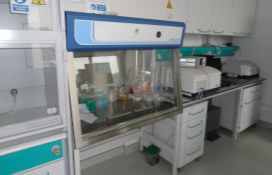 photo of the Laminar flow cabinets